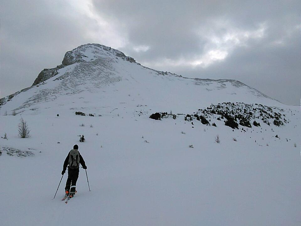 Brachiopod Mountain *